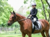 Hearthstone Schooling Show May 2015